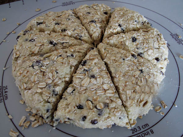 Oat scones dough cut