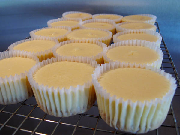 Mini Cheesecakes cooling