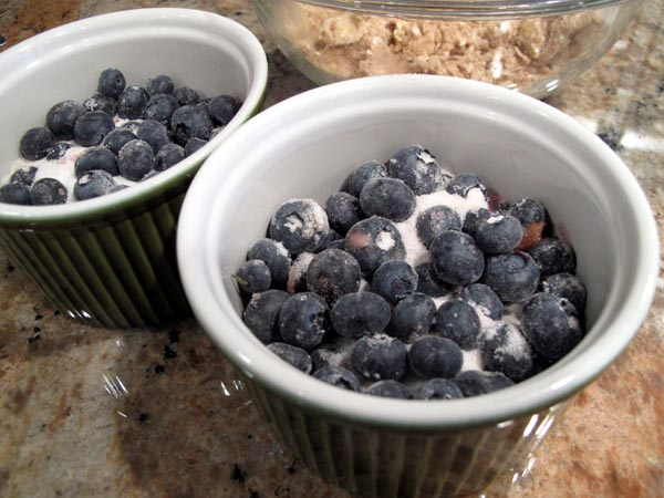 Blueberry Crisp Berries