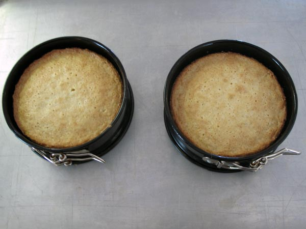 Almond Cakes baked