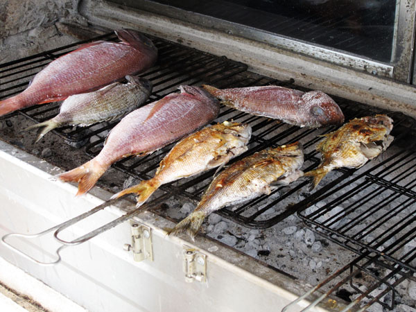 Fish grilling