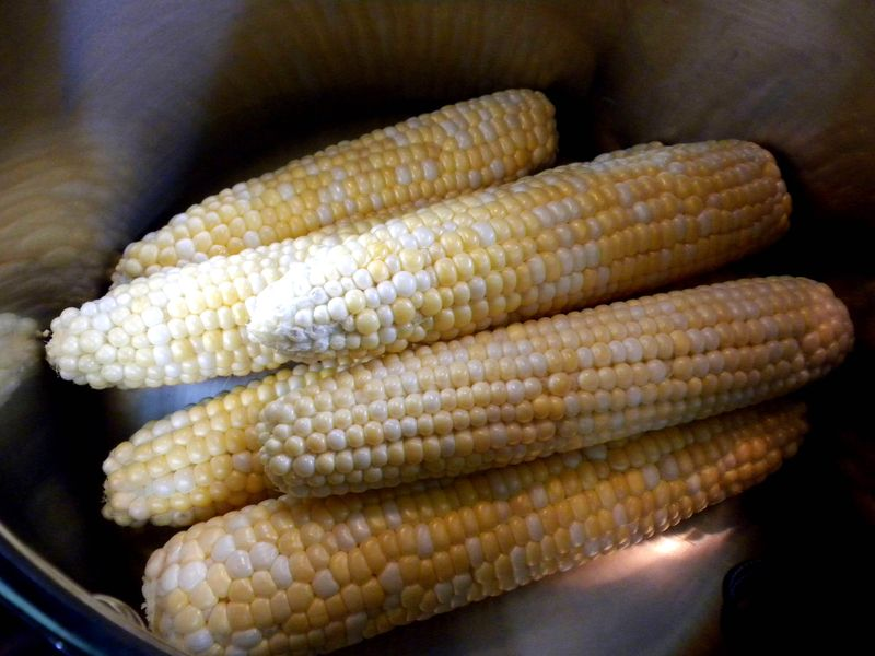 Corn in pot1