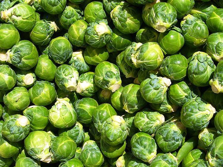 Brussels_sprouts raw